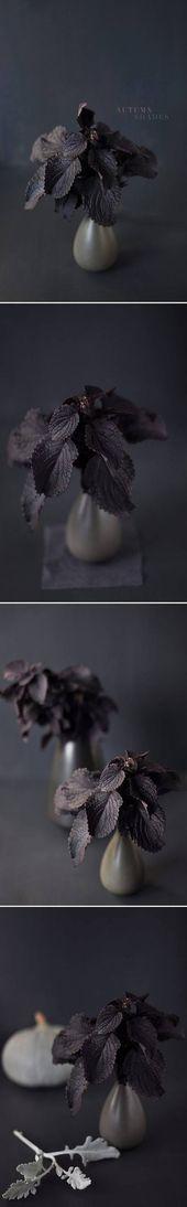 Fleurs Art Dark Inspiration 58 Idées de mode   – ✽ Flowers