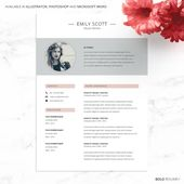 Illustrator Resume Welcome to Bold Resume! We provide creative, high quality and professional job r...