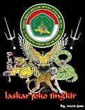 Lambang Pagar Nusa : lambang, pagar, Lambang, Pagarnusa, Pencak, Silat,, Sejarah,