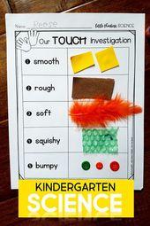 Kindergartenwissenschaft