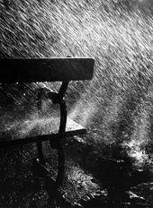 Bank im Regen