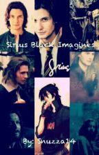 Sirius Black X Reader Oneshots Sirius Black Sirius Sirus Black