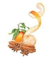 Illustrator Herramientas Weihnachtliche Motive zum Zeichnen, zwei Mandarinen, Zimt und Anis, einfache Zei...