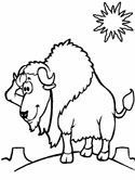 Mammals Of Poland Wisent Coloring Pages Mammals Lapbook