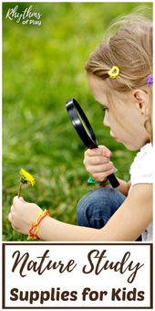Best Nature Study Supplies for Kids