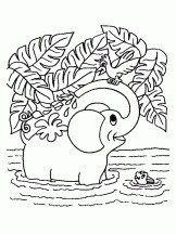Coloriage Elephant Elephant Coloring Page Animal Coloring Pages Free Coloring Pages