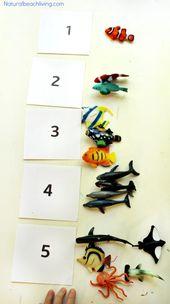 Montessori Theme Ocean Preschool Activities & Printables – Natural Beach Living