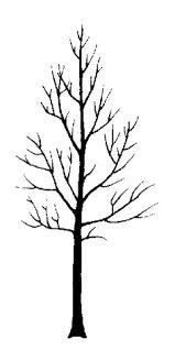 Image Result For Bare Branch Tree Tattoos Aspen Trees Tattoo Aspen Trees Tree Tattoo