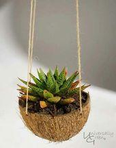 Hanging Succulent Garden Cactus 50+ Trendy Ideas – Succulents