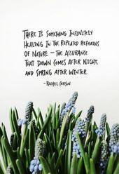 Die 573 Besten Bilder Zu Words Naturweisheiten Nature Quotes