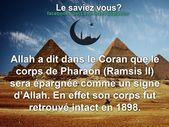 """Ceci est le website de la web page fb """"le saviez vous? Islam"""". Ici vouz retrouvez…"""