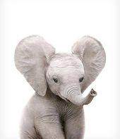 Safari Kinderzimmer Kunst, Elefant print, DRUCKBARE Kunst, Safari Tiere Wandkunst, Elefantenbaby, Safari Thema, Kinderzimmer Wandkunst, Safari Babyzimmer   –  want to draw