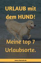 Charoula Barmpouti   Meine top 7 Urlaubsorte mit dem Hund