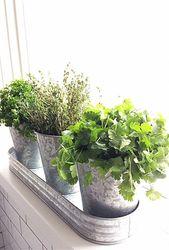 Miniatur-Feengarten #Dachgarten #LandhausGarten #ModernesFerienhausGarten …   – Mini Garden