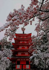 JAPAN LOVES ME – #ENAMORA #Japon #sakura – #ENA …