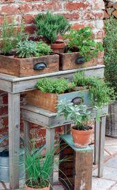 Natürliche Blütenpracht: Sommerblumen für den Landhausgarten – Balkon