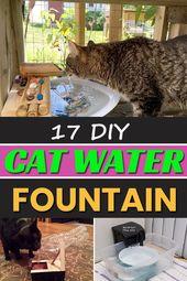 17 DIY Katzenbrunnen
