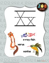 Letter X Animals Printable Poster Primarylearning Org Alphabet Letter Hunt Lettering Animals Starting With A