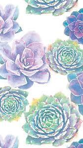 Pin By Lindsey On Pantalla Succulents Wallpaper Watercolor Wallpaper Pretty Wallpapers
