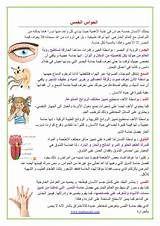 نتيجة بحث الصور عن اعضاء جسم الانسان Education Ads Journal