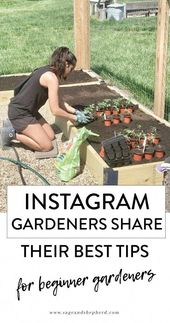 So what can the home garden enthusiast do? First, understand that aid is on the …