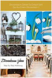 Dekoration im Winter für den Garten #Dekoration januar