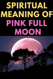 Spiritual Meaning Of Pink Full Moon Insight State Pink Moon Meaning Full Moon Spells Flower Moon Meaning