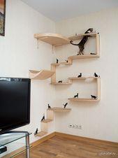 #Katze #Regal # Möbel #Tierinnen # Tiermöbel #Wohnzimmer #Katzen – Katzen