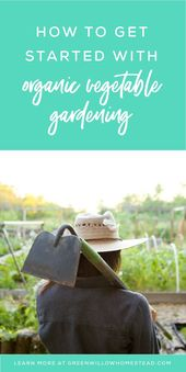 How to get started with organic vegetable gardening