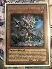 DANE-EN020 Secret Rare 1st Edition NM Dark Omni Dragon Brotaur