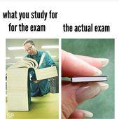 Lege jede Prüfung ab. Bis auf Sie wissen, dass eine Klasse, die immer eine Flosse hat …   – motivational