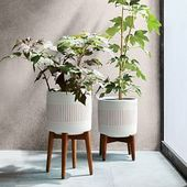 Turned Wood Leg Tabletop Planter, Small, White