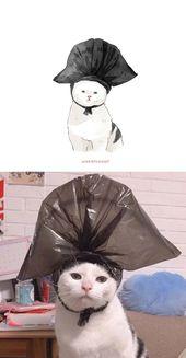 75 de las imágenes más divertidas de gatos famosos en Internet están coloreadas por este artista   – Comprimento