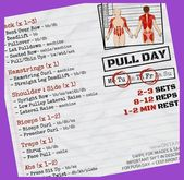 Push/Pull/Legs Split: 3-6 Day Weight Training Workout Schedule and Plan | Push Pull Legs Ecto…