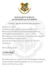 Harry Potter Geburtstag 1 Eulenpost Diy Party Party Diy