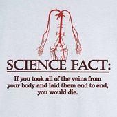 Wissenschaft Fakt lustige Grafik T-Shirt RC12820 auf Etsy, $ 17.99 #funny #graphic # rc12 …