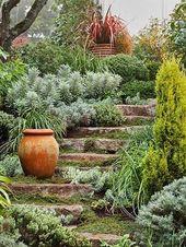 Ce guide de plantation résout tous vos problèmes de jardin en pente   – gardening