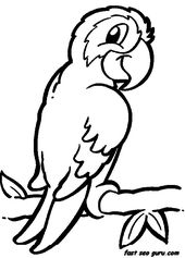 19 best camp images on Pinterest Animal coloring pages Coloring