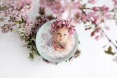 cherry blossom milk bath, vintage basin milk bath, baby milk bath