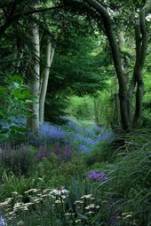 Exquiste Garten in einer natürlichen Waldlandscha…