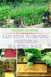 Entdecken Sie diese Behältergartenidee 9848016328, um sie noch heute zu überprüfen. #containergard …   – Container Gardening Ideas