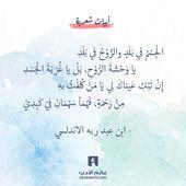 يا وحشة الروح من اجمل قصائد ابن عبد ربه الاندلسي عالم الأدب Wise Words Quotes Quran Quotes Inspirational Islamic Love Quotes