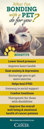 """9 Gründe, warum es gut für die menschliche Gesundheit ist, ein """"Haustier-Elternteil"""" zu sein"""