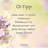 FRISCHE BLUMEN Es ist Frühling und überall gibt es schöne Tulpen zu kaufen …   – dōTERRA Lifehacks ätherische öle