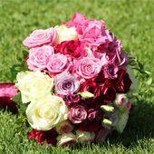 Brautstrauß Buy New Brautstrauß Nice Round From Hydrangea Roses Pink Fuchsia   – Hochzeitskarten