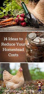 14 Einfache Ideen So senken Sie Ihre Homestead-Kosten noch heute – Homestead