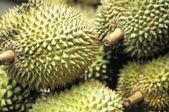 Study: Building a better super-capacitor out of super-stinky durian fruit