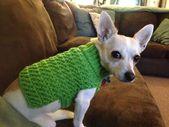 25 Patrón hermoso del suéter del perro del ganchillo – la puntada enrrollada   – Crochet: Pets