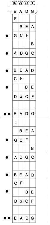 Bass Fret Chart : chart, Fretboard, Diagram, Complete, Guitar, Fretboard,, Guitar,, Acoustic