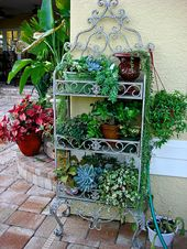 Container Garden Ideas | BEAUTIFUL CONTAINERS-Share Photos/Ideas/Questions forum…
